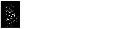 digitalis-logo-white